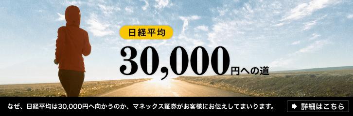 日経3万円特設サイト