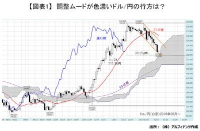 20170118_tajima_graph01.JPG
