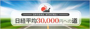 日経平均30,000円への道